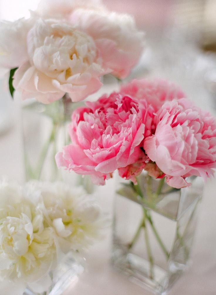 tischdeko hochzeit pfingsrosen rosa pink hochzeitsblog. Black Bedroom Furniture Sets. Home Design Ideas