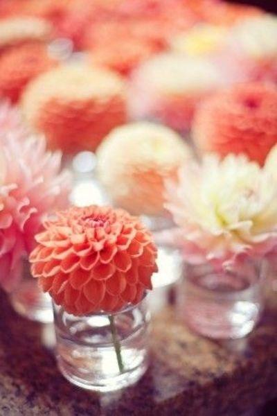 Tischdeko Dalien Orange Pink Hochzeit Hochzeitsblog Schweiz